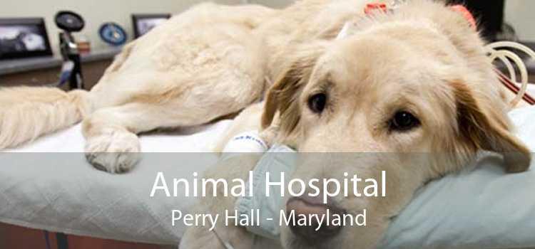 Animal Hospital Perry Hall - Maryland