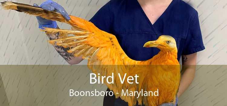Bird Vet Boonsboro - Maryland