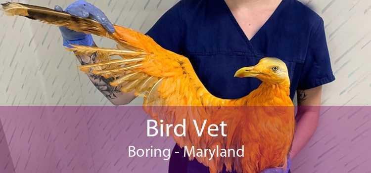 Bird Vet Boring - Maryland