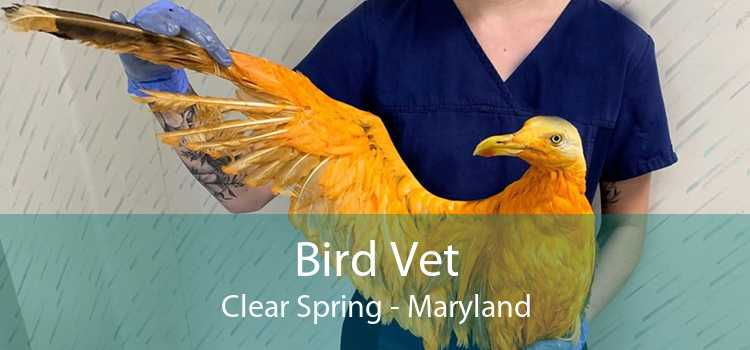 Bird Vet Clear Spring - Maryland