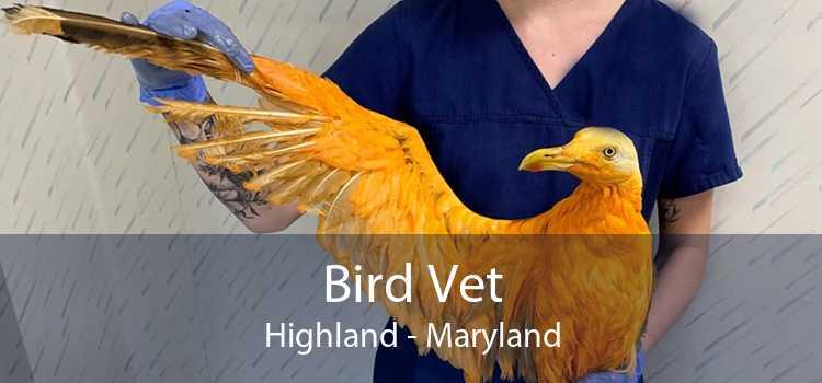 Bird Vet Highland - Maryland