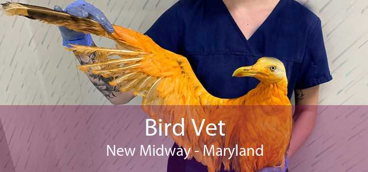 Bird Vet New Midway - Maryland