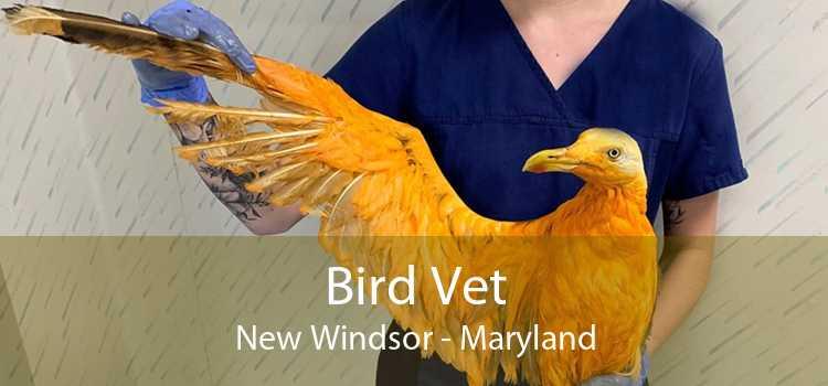 Bird Vet New Windsor - Maryland