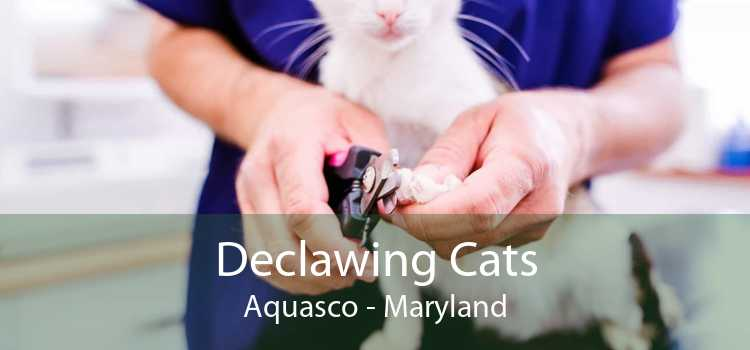 Declawing Cats Aquasco - Maryland