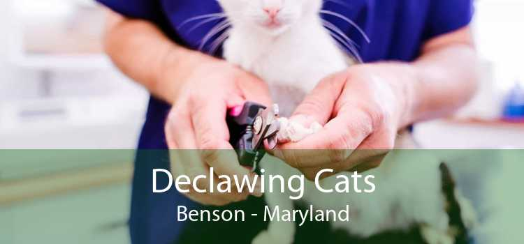 Declawing Cats Benson - Maryland