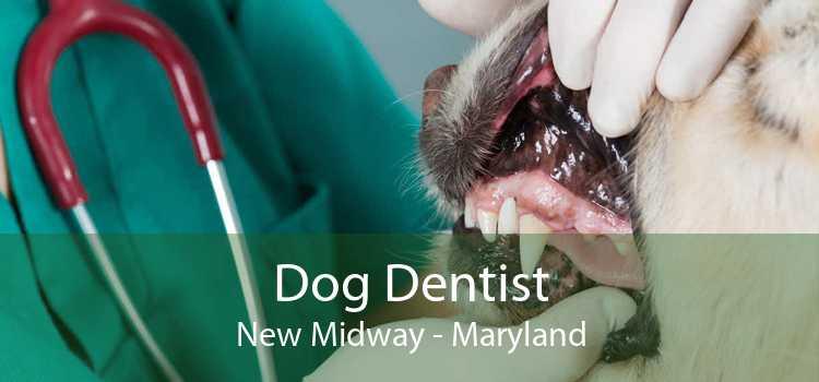 Dog Dentist New Midway - Maryland