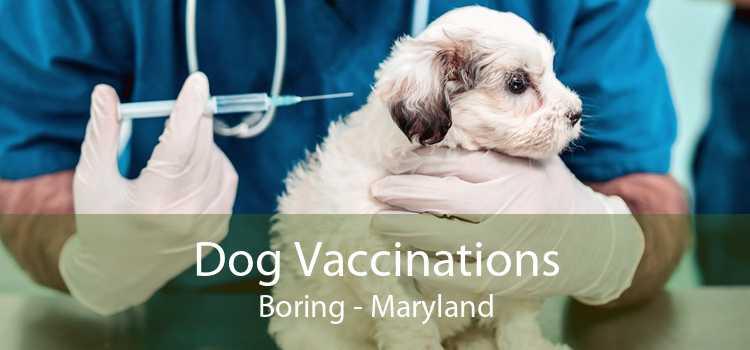 Dog Vaccinations Boring - Maryland