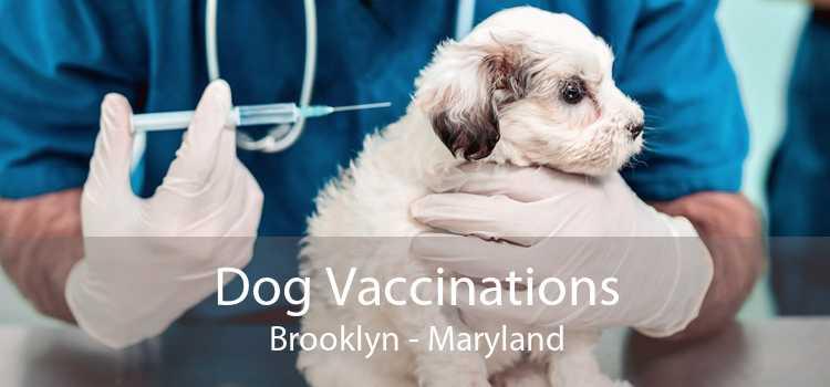 Dog Vaccinations Brooklyn - Maryland