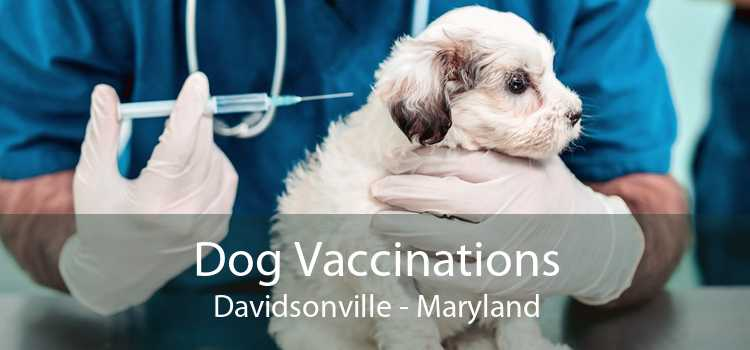 Dog Vaccinations Davidsonville - Maryland