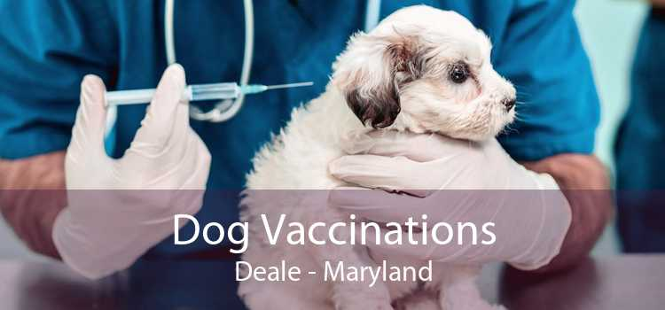 Dog Vaccinations Deale - Maryland