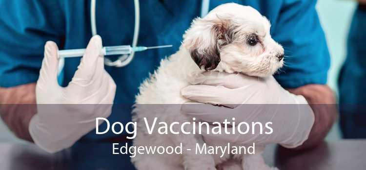 Dog Vaccinations Edgewood - Maryland