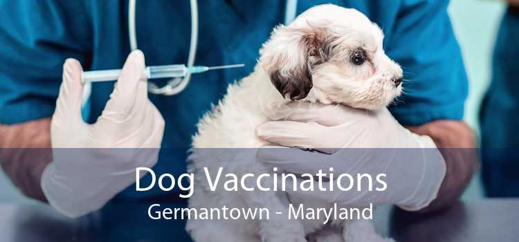 Dog Vaccinations Germantown - Maryland