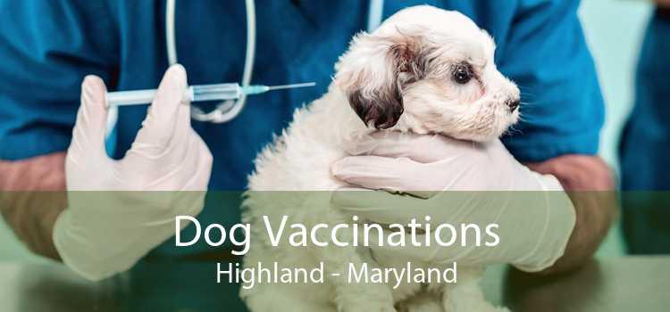 Dog Vaccinations Highland - Maryland