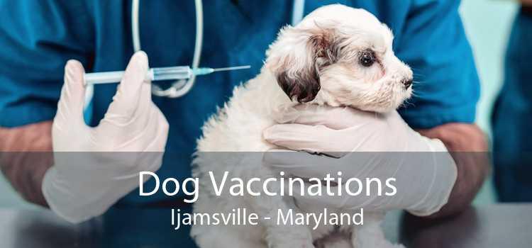 Dog Vaccinations Ijamsville - Maryland
