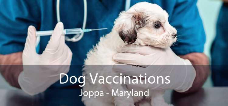 Dog Vaccinations Joppa - Maryland
