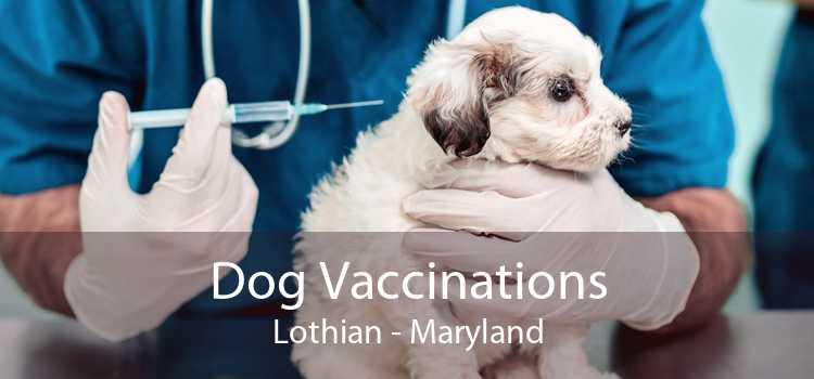 Dog Vaccinations Lothian - Maryland
