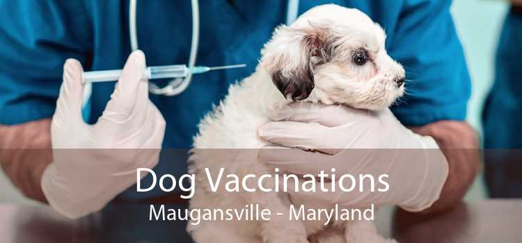 Dog Vaccinations Maugansville - Maryland