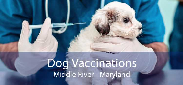 Dog Vaccinations Middle River - Maryland