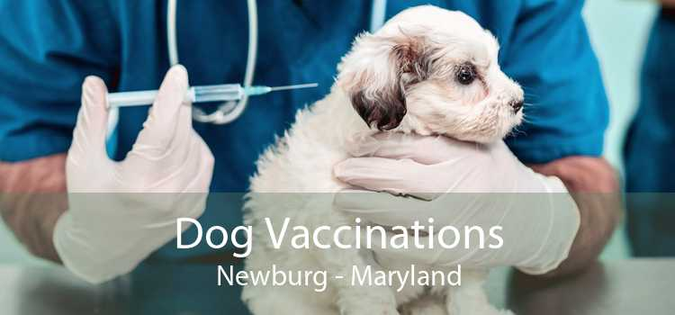Dog Vaccinations Newburg - Maryland