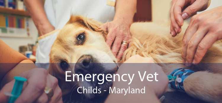 Emergency Vet Childs - Maryland