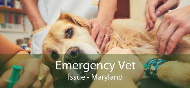 Emergency Vet Issue - Maryland
