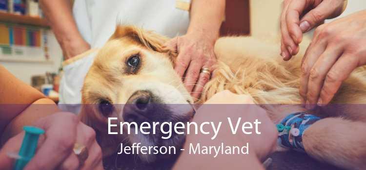 Emergency Vet Jefferson - Maryland