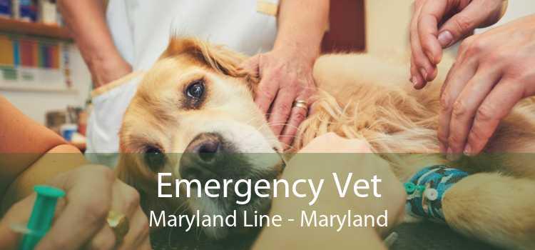 Emergency Vet Maryland Line - Maryland