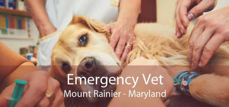 Emergency Vet Mount Rainier - Maryland