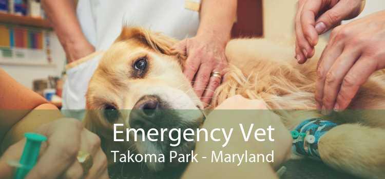Emergency Vet Takoma Park - Maryland