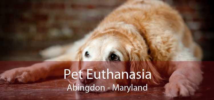 Pet Euthanasia Abingdon - Maryland