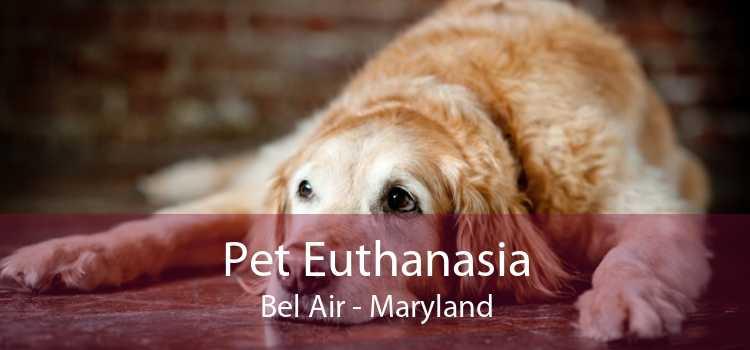 Pet Euthanasia Bel Air - Maryland