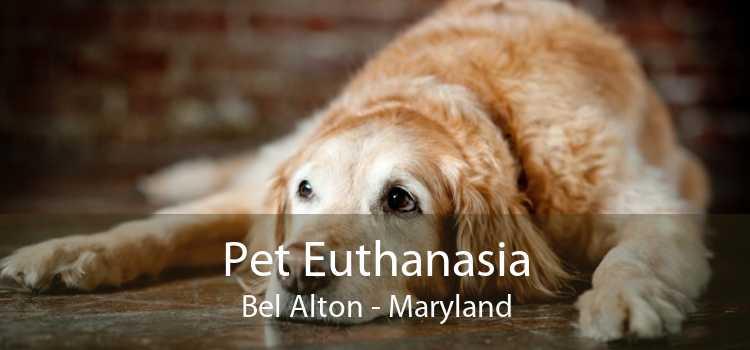 Pet Euthanasia Bel Alton - Maryland