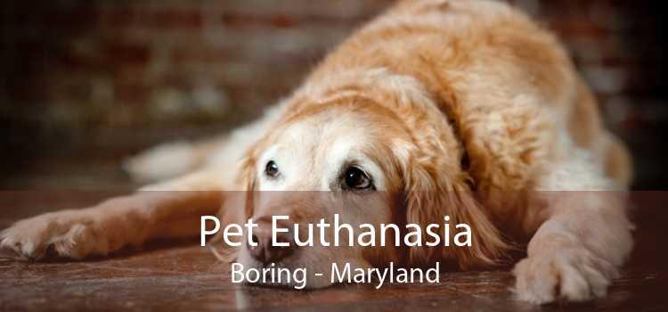 Pet Euthanasia Boring - Maryland