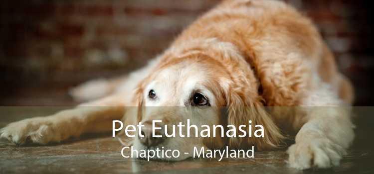 Pet Euthanasia Chaptico - Maryland