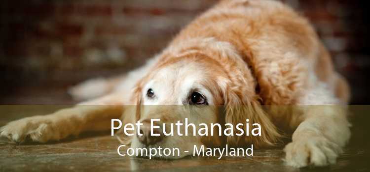 Pet Euthanasia Compton - Maryland