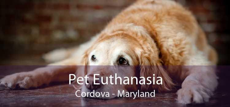 Pet Euthanasia Cordova - Maryland