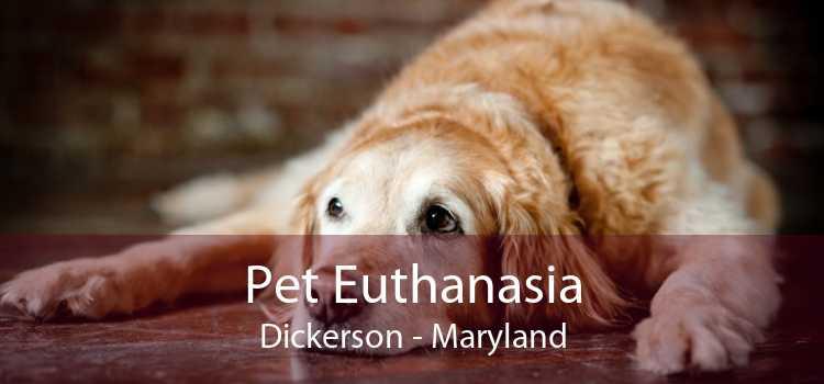 Pet Euthanasia Dickerson - Maryland