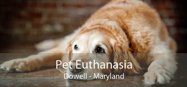 Pet Euthanasia Dowell - Maryland