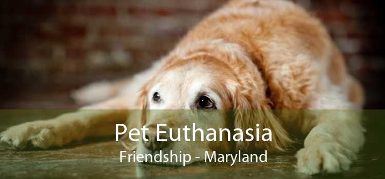 Pet Euthanasia Friendship - Maryland