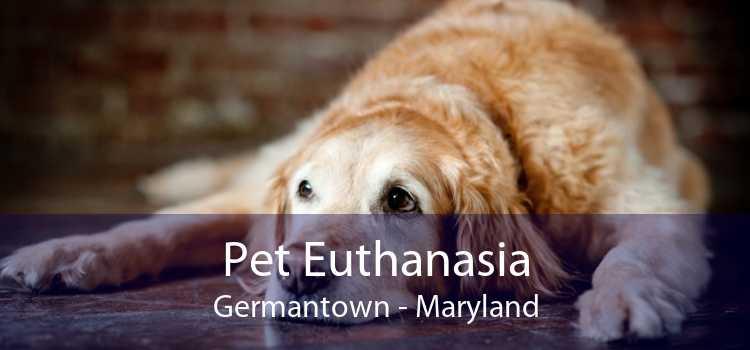 Pet Euthanasia Germantown - Maryland