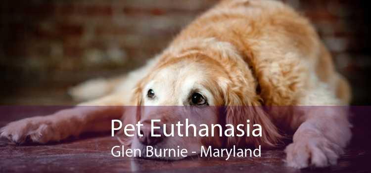 Pet Euthanasia Glen Burnie - Maryland