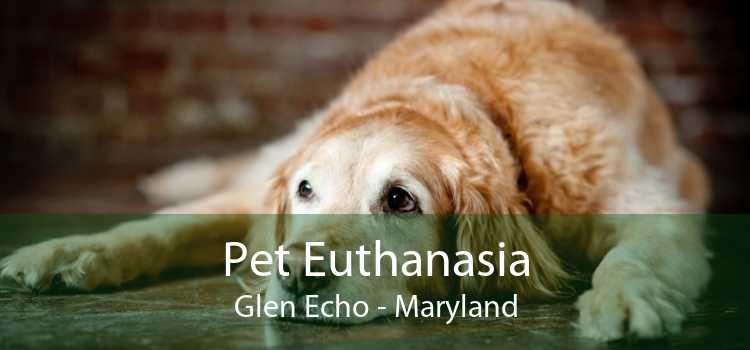 Pet Euthanasia Glen Echo - Maryland