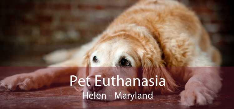 Pet Euthanasia Helen - Maryland