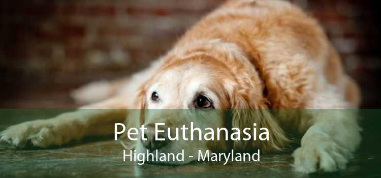 Pet Euthanasia Highland - Maryland