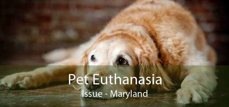 Pet Euthanasia Issue - Maryland