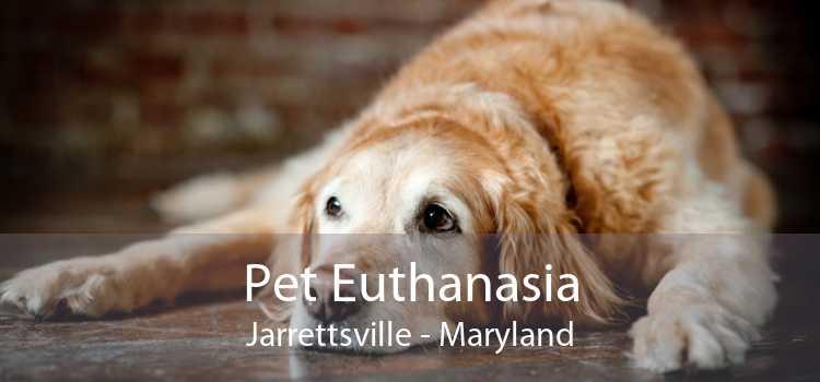 Pet Euthanasia Jarrettsville - Maryland