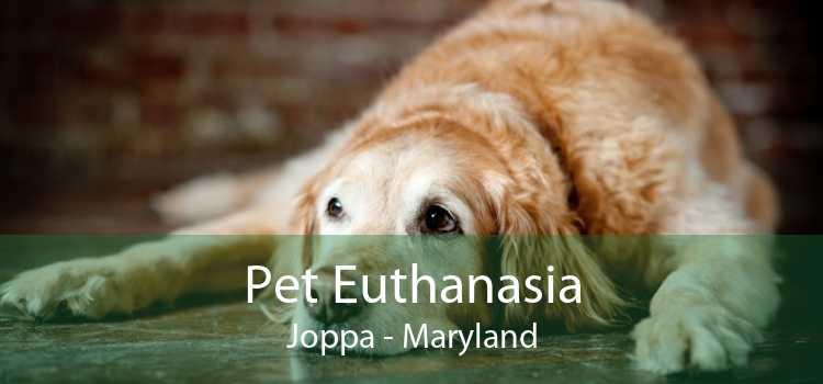 Pet Euthanasia Joppa - Maryland