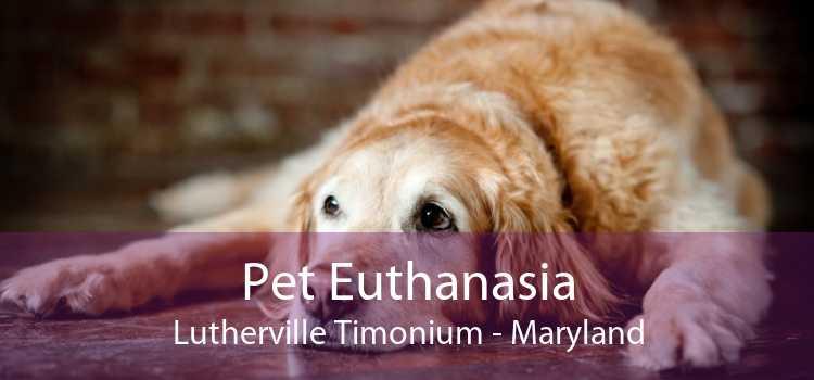 Pet Euthanasia Lutherville Timonium - Maryland
