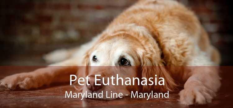 Pet Euthanasia Maryland Line - Maryland