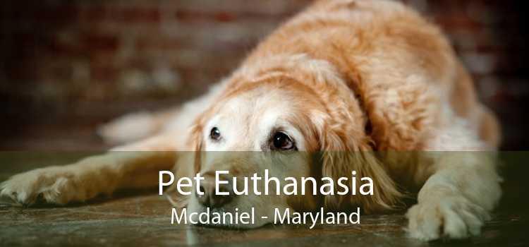 Pet Euthanasia Mcdaniel - Maryland